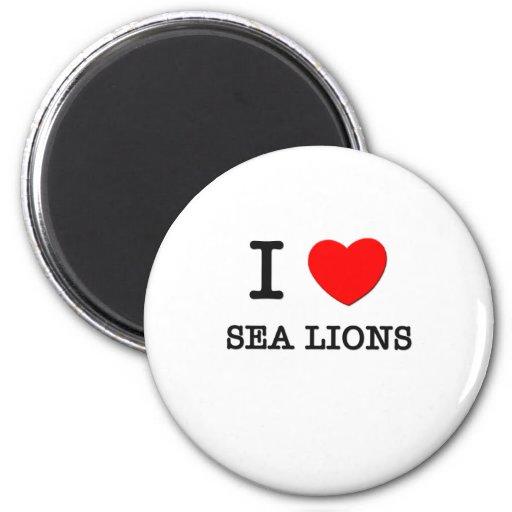 Amo leones marinos imán de frigorífico