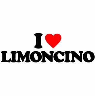 AMO LIMONCINO ESCULTURAS FOTOGRÁFICAS