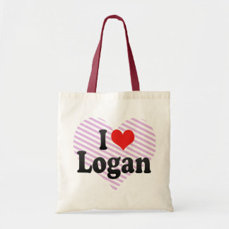 Amo Logan Bolsa