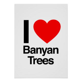 amo los banianos poster