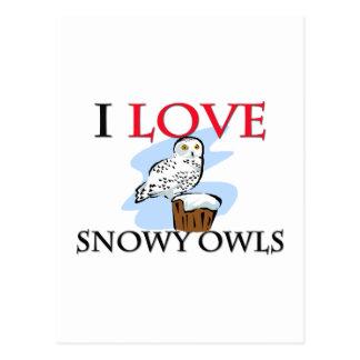Amo los búhos Nevado Postales