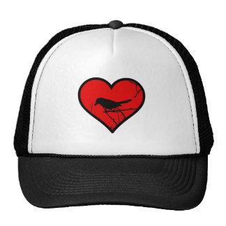 Amo los Catbirds, mirando el corazón de la silueta Gorras