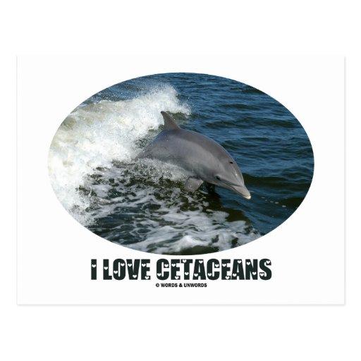 Amo los cetáceos (la violación del delfín de Bottl Postales