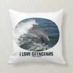 Amo los cetáceos (la violación del delfín de almohada