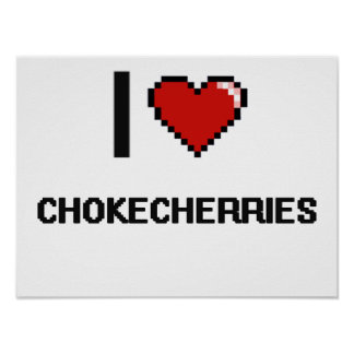 Amo los Chokecherries Póster