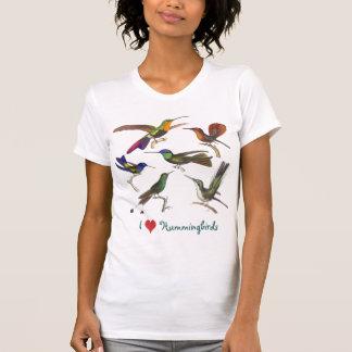 Amo los colibríes - seis diversas especies playeras