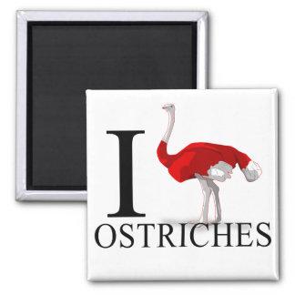 Amo los imanes de las avestruces imán cuadrado
