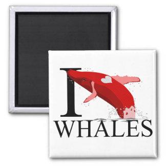 Amo los imanes de las ballenas imán cuadrado