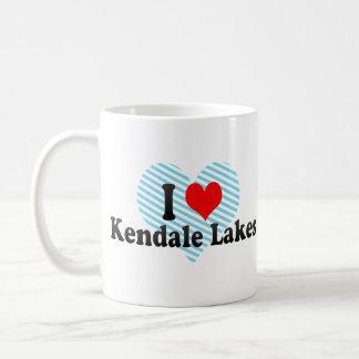 Amo los lagos Kendale, Estados Unidos Taza