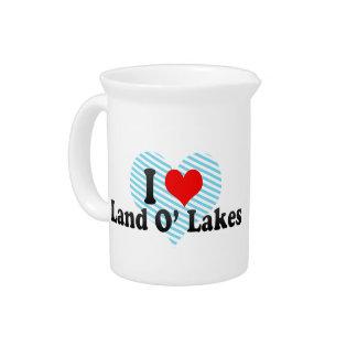 Amo los lagos O de la tierra, Estados Unidos Jarron