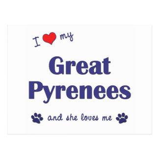 Amo los mis grandes Pirineos (el perro femenino) Tarjeta Postal