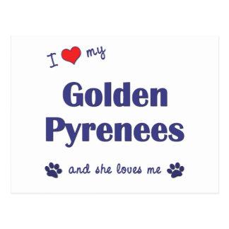 Amo los mis Pirineos de oro (el perro femenino) Tarjeta Postal
