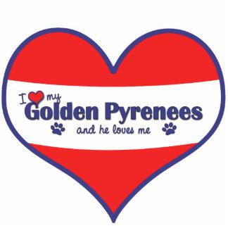 Amo los mis Pirineos de oro (el perro masculino) Adorno Fotoescultura