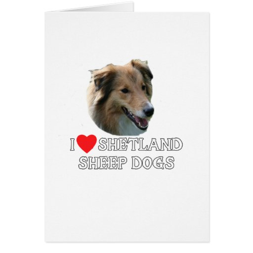 Amo los perros pastor de Shetland Tarjeta De Felicitación