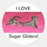 ¡AMO los planeadores del azúcar! PEGATINA