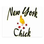 Amo los polluelos de Nueva York Tarjeta Postal