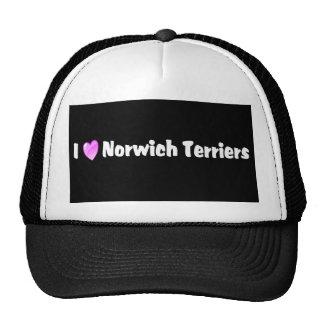 Amo los terrieres de Norwich Gorras De Camionero