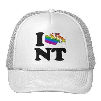 AMO LOS TERRITORIOS DEL NOROESTE GAY - .PNG GORROS BORDADOS