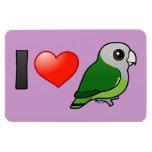 Amo Lovebirds Gris-dirigidos Imanes