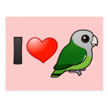 Amo Lovebirds Gris-dirigidos Tarjeta Postal