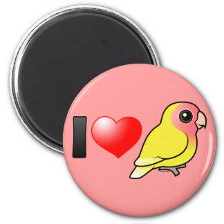 Amo Lovebirds Melocotón-hechos frente Lutino Imán Redondo 5 Cm