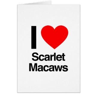 amo macaws del escarlata tarjeta de felicitación