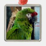 ¡Amo macaws! Ornamentos Para Reyes Magos