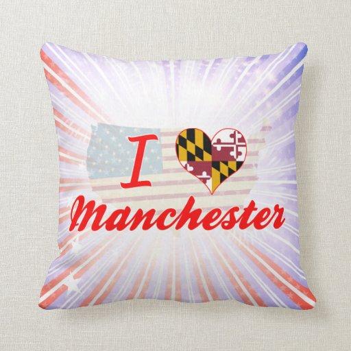 Amo Manchester, Maryland Almohada
