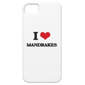 Amo Mandrakes iPhone 5 Carcasas