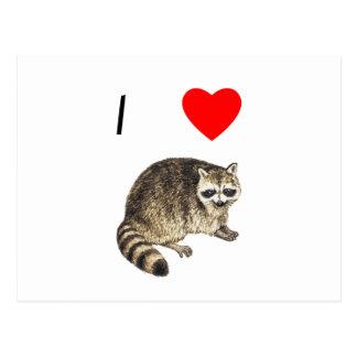 Amo mapaches tarjetas postales