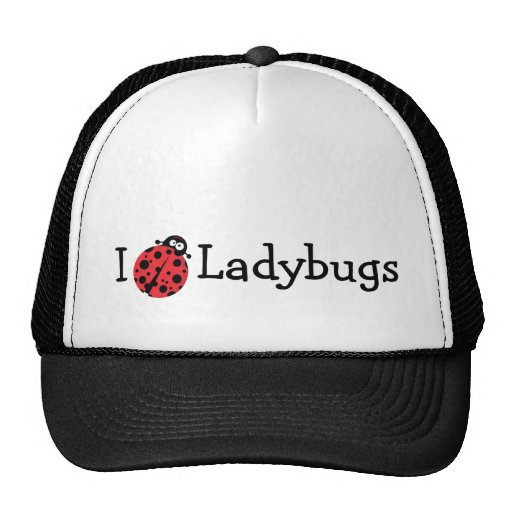 Amo mariquitas gorra