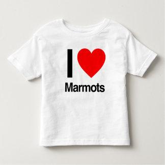 amo marmotas playeras