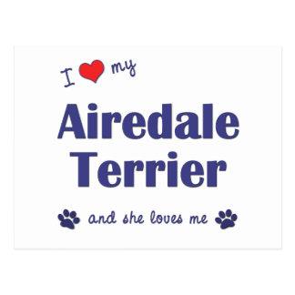 Amo mi Airedale Terrier (el perro femenino) Postales