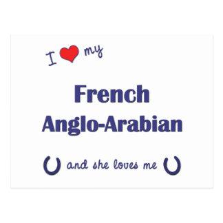 Amo mi Anglo-Árabe francés (el caballo femenino) Postal