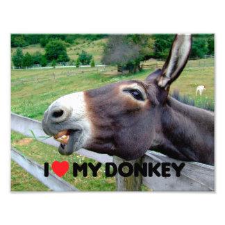 Amo mi animal del campo divertido de la mula del arte fotografico