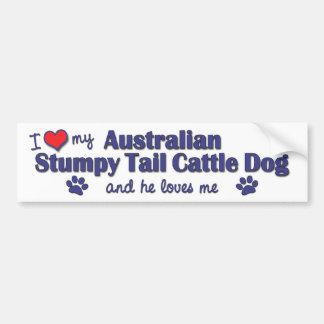 Amo mi Aust. Perro achaparrado del ganado de la co Pegatina Para Auto