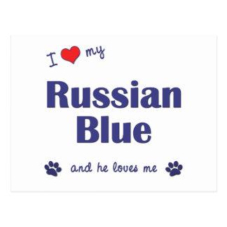 Amo mi azul ruso (el gato masculino) tarjetas postales