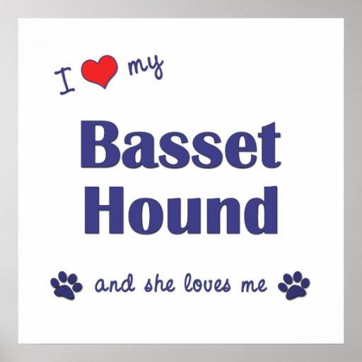 Amo mi Basset Hound (el perro femenino) Poster