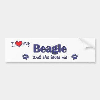 Amo mi beagle (el perro femenino) pegatina para auto
