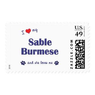 Amo mi birmano del Sable (el gato femenino) Sello