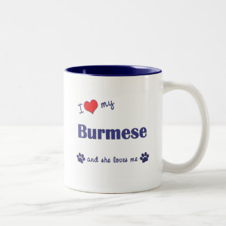 Amo mi birmano (el gato femenino) taza de dos tonos