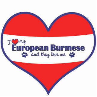 Amo mi birmano europeo (los gatos múltiples) adorno fotoescultura