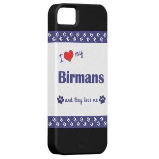 Amo mi Birmans (los gatos múltiples) iPhone 5 Fundas