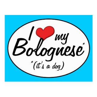 Amo mi boloñés (es un perro) tarjetas postales
