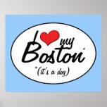 Amo mi Boston (es un perro) Posters