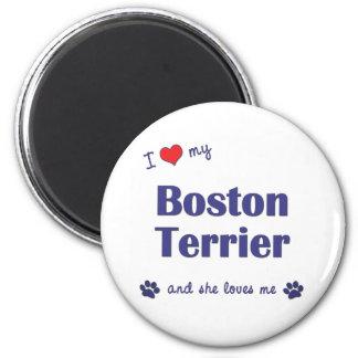 Amo mi Boston Terrier (el perro femenino) Imán De Nevera