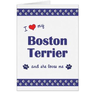 Amo mi Boston Terrier (el perro femenino) Tarjeta Pequeña