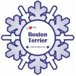 Amo mi Boston Terrier (el perro masculino) Esculturas Fotográficas