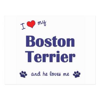 Amo mi Boston Terrier (el perro masculino) Tarjeta Postal
