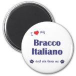 Amo mi Bracco Italiano (el perro femenino) Iman De Frigorífico